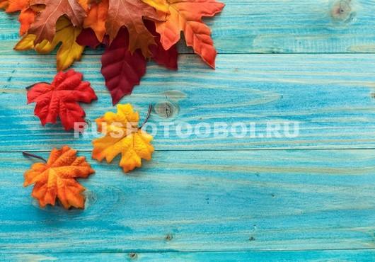 Листья на фоне дерева