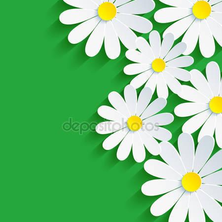 Фотообои 3d цветок ромашка