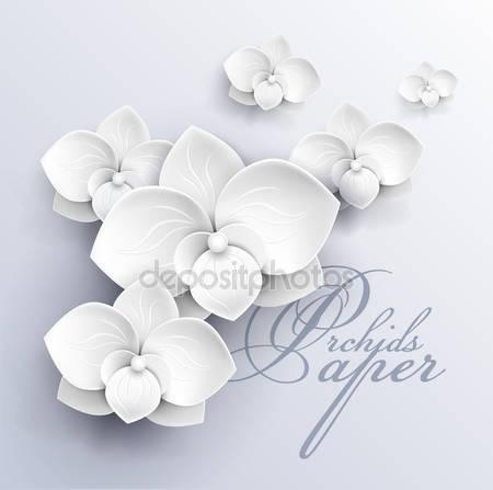 Белые орхидей