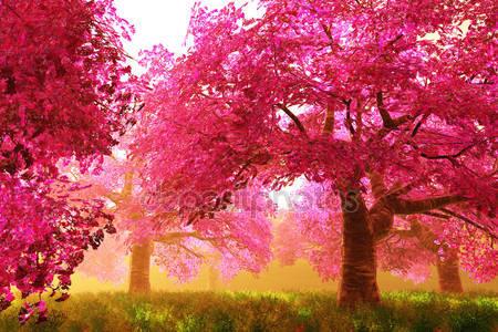 Фотообои Деревья вишни