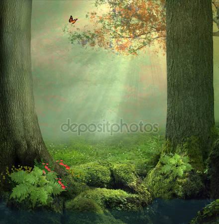 Фотообои Очарованный лес