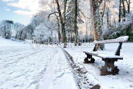 Фотообои Скамейка в зимнем парке