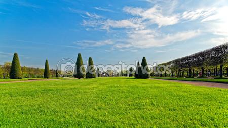 Фотообои Нижний парк