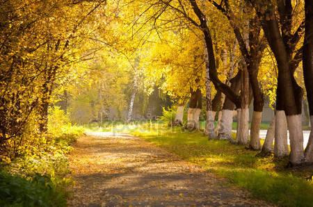 Осенний переулок