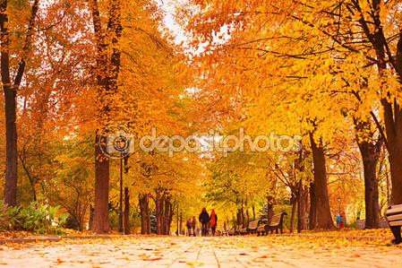 Романтический осенний парк