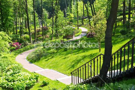Красивый весенний зеленый парк