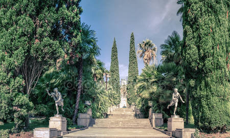 Фотообои Ботанический сад