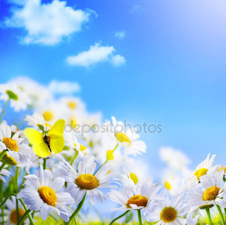 Весной фон