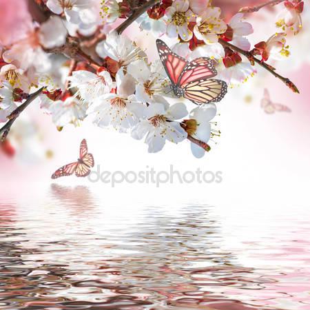 Фотообои Абрикосовые цветки с бабочками