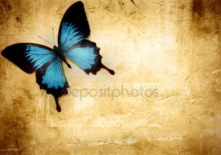 Фотообои Бабочка
