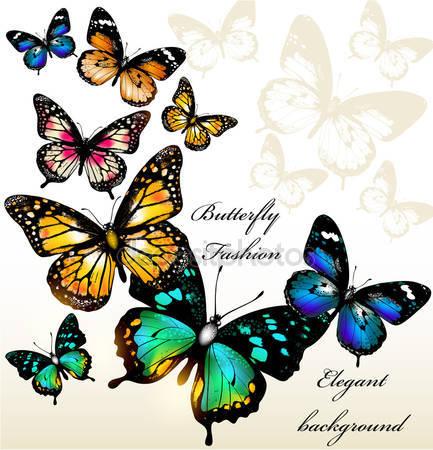 Фотообои Фон с бабочками