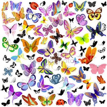Фотообои Набор божьей коровки и бабочки