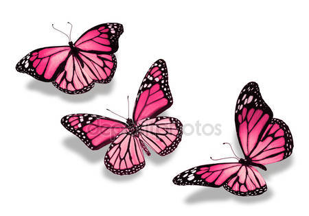 Три розовые бабочки