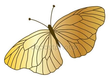 Золотая бабочка крупным планом