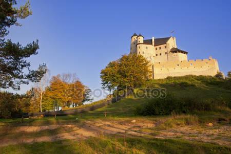 Фотообои Замок в bobolice