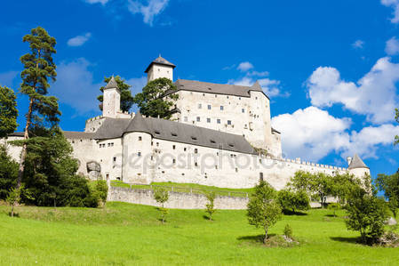 Раппоттенштайн замок