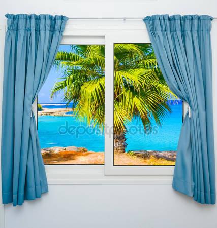 Фотообои Представление окна о морской пальме