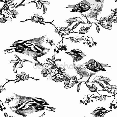 Акварель диких экзотических птиц