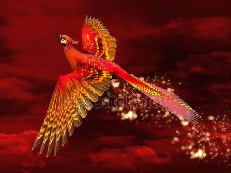 Феникс через красное небо