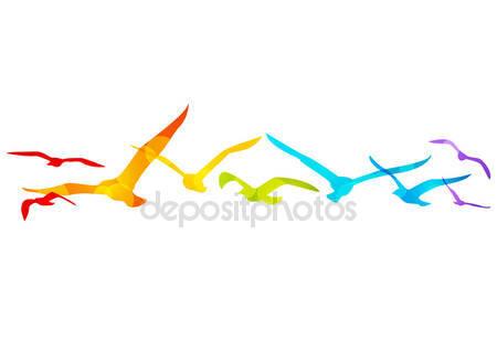 Фотообои Птицы радуги