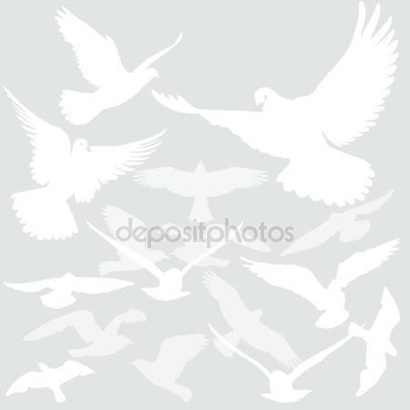 Птицы летают в воздухе
