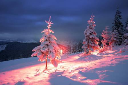 Морозная зимняя ночь