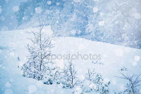 Фотообои Заснежанный лес