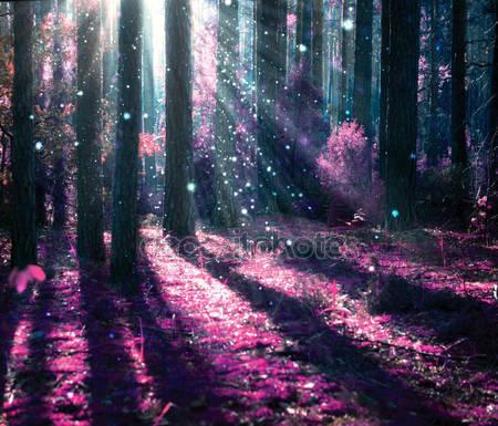 Таинственный старый лес
