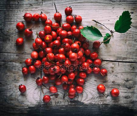 Плоды боярышника на деревянных фоне